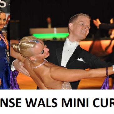 Weense Wals mini cursus